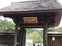 鎌倉龍寶寺(りゅうほうじ) - 散歩と花と猫が好き☆