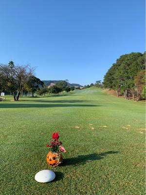 ゴルフ♡ - 陽子ママ日記