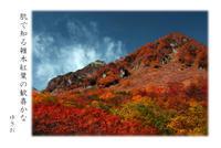 紅葉狩りその⑥ - ゆきおのフォト俳句