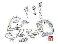 食べられる茸 → キノコ鍋(滑杉茸、紫占地、楢茸、畑占地、網平茸など) - 世話要らずの庭