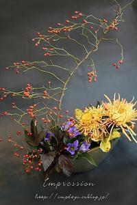 定期装花から糸菊:絢 - Impression Days