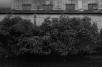 運河建物(部分) - 散歩と写真