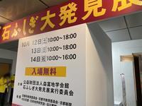 第31回京都ショー(2) - ふぉっしるもしてみむとてするなり