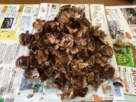 栗の渋皮煮 - キラキラ✨おばさんのシルバー日記