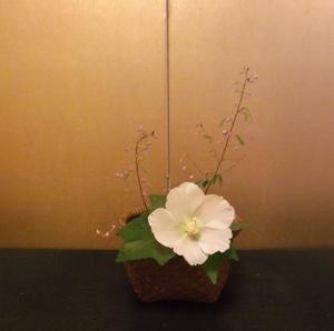 颱風 - 一茎草花
