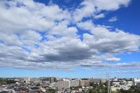 扁平雲(積雲) - 日々の風景