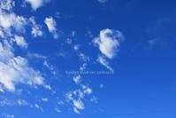 空青く - FUNKY'S BLUE SKY