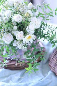 台風の後 - Le vase*  diary 横浜元町の花教室