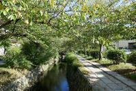 9月の京都その7(法然院、熊野若王子神社 他) - 風任せ自由人