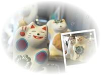 LUCKY   CAT! - LAGOMな……PHOTO   LIFE !