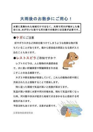 毎日笑顔♪ 裸犬☆温・真珠・絆愛Ⅱ