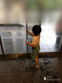 育児中の課題〜子連れ避難と課題〜 - そらいろ