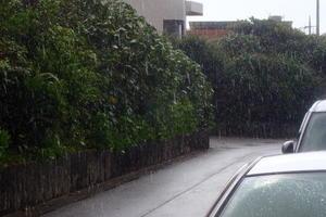 19.10.14久しぶりの『雨』 -