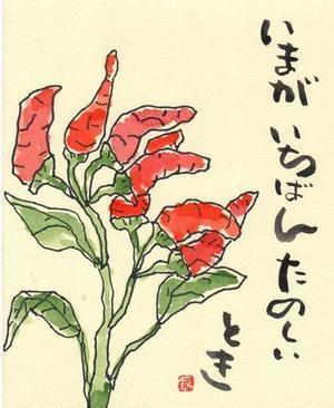 唐辛子 - 銀の絵手紙
