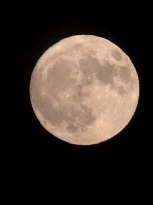 嵐去り澄んだ夜空にのぼる月 - ちょこっとした理科の小道具