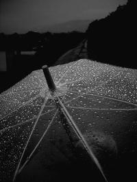 雨の日は雨を - memephoto blog