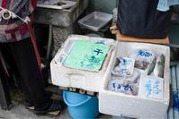 小さな魚屋さん - ホンテ島 日記