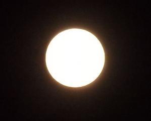 月 - つれづれ
