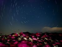青い海と星空 - Aoiumisky's Blog