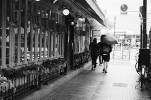 午後の雨 - summicron