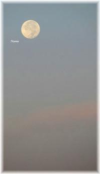 早朝の満月・・・ - おだやかに たのしく Que Sera Sera