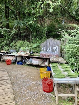 大好きな「韓定食」のお店 - 今日も食べようキムチっ子クラブ (料理研究家 結城奈佳の韓国料理教室)