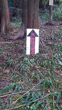 鈴木邸へ行ってきました。 - ウンノ整体と静岡の夜