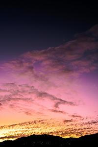 紫色の空ってあるんだよ - Omoブログ