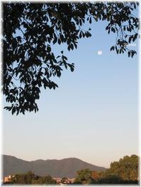 朝散歩と白い月 - おだやかに たのしく Que Sera Sera