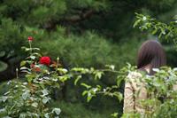 miruhana会員Fさんと旧古河庭園に来てます。 - meの写真はザンス