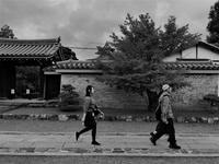 天竜寺 - Taro's Photo