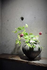 伊藤剛俊 作品展開催中です - 工房IKUKOの日々