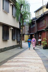 金沢旅情(主計町・ひがし茶屋街) - 花景色-K.W.C. PhotoBlog