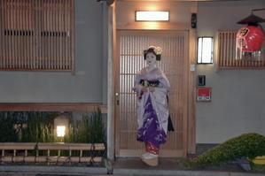 宮川町みずゑ会と千賀明さん - 花街ぞめき  Kagaizomeki