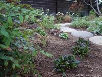 秋の庭しごと宿根草と低木の植えつけ2 - シンプルで心地いい暮らし