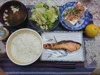 10/18 塩時鮭新米定食@自宅 - 無駄遣いな日々