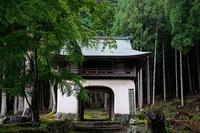 雨の日の山寺@古知谷阿弥陀寺 - デジタルな鍛冶屋の写真歩記