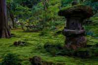 三千院~モシュ印/コケ寺リウム - 鏡花水月