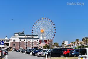 Lealea Travel Days