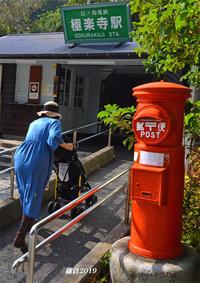 すぐ前を江ノ電が‥‥ 『そうだ 鎌倉、行こう』 - 写愛館