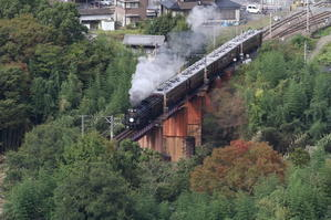 薄日と白煙 - 2019年秋・秩父鉄道 - - ねこの撮った汽車