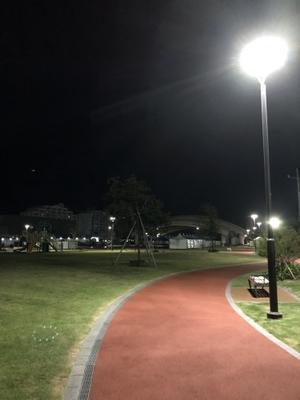 早朝のウォーキング - 大竹智巳 ハープブログ
