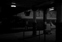 Night Trains - floating mind
