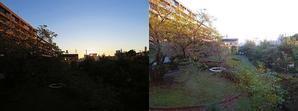 19号台風翌朝・日の出前  - 寄り添いの日々