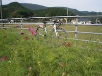ロードバイクデビュー - *Blog diary*