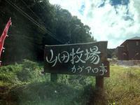山田牧場 - プリンセスシンデレラ