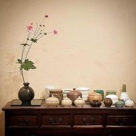 秋のしつらえに風情を添える「貴船菊」   - Salon de deux H