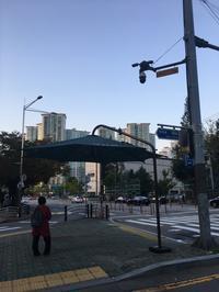 ソウルの秋を楽しむ横断歩道で見かける巨大日傘 - くちびるにトウガラシ