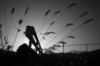 夜の淵 - 旅する       memephoto
