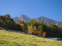 高原の秋 - 八ヶ岳 革 ときどき くるみ